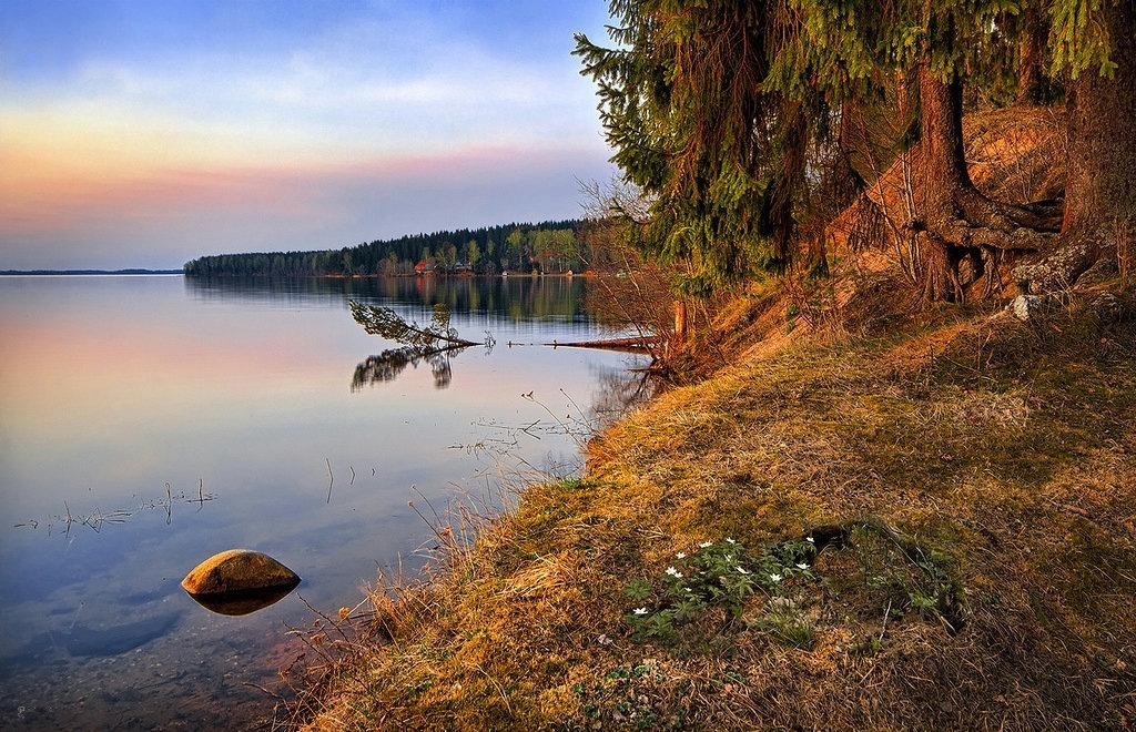 В Тверской области расчистят озеро Селигер  - новости Афанасий
