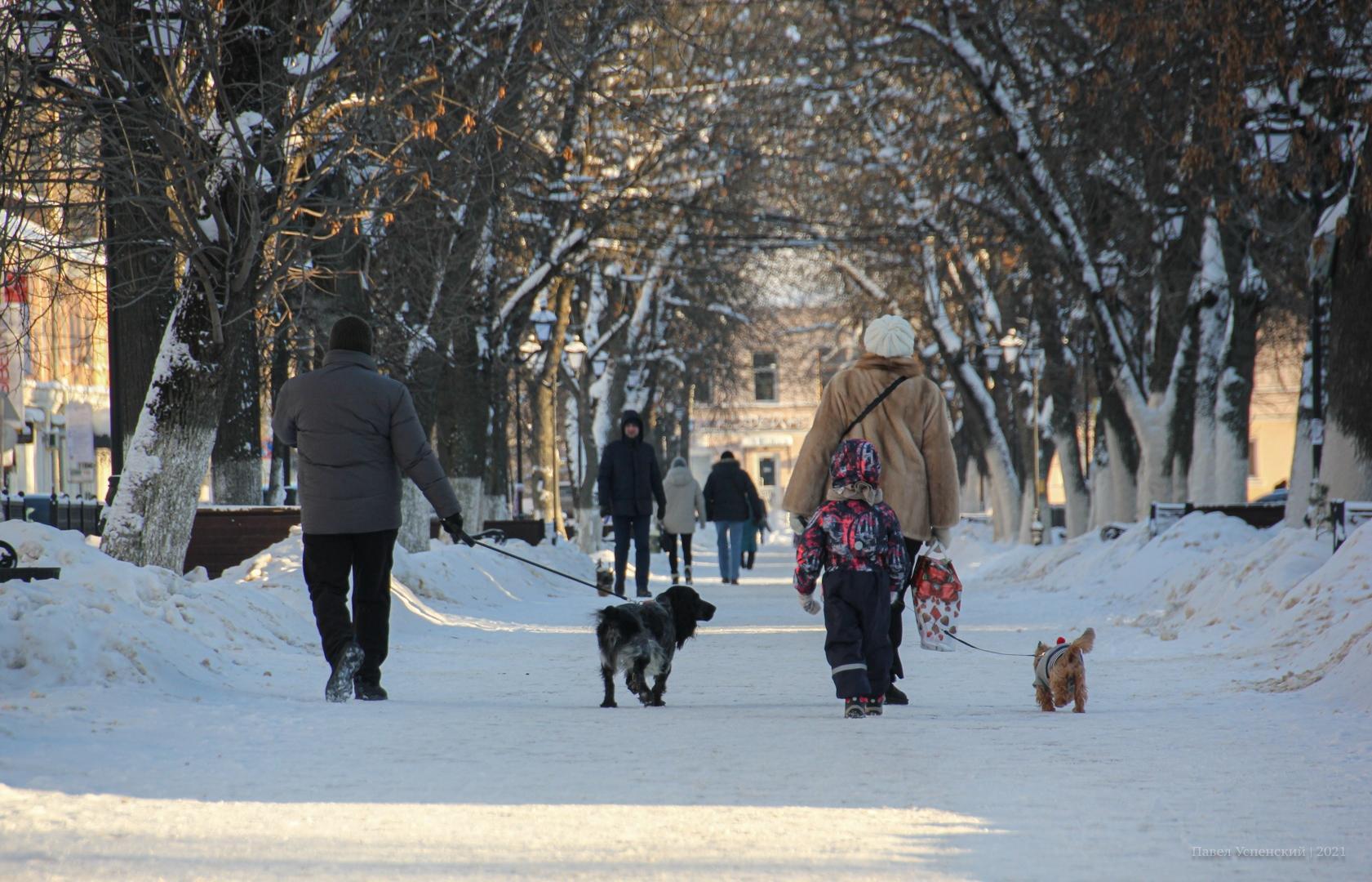 В Тверской области потеплеет до нуля к концу недели