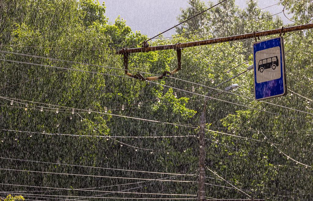 Сильный дождь прогнозируют синоптики в Тверской области