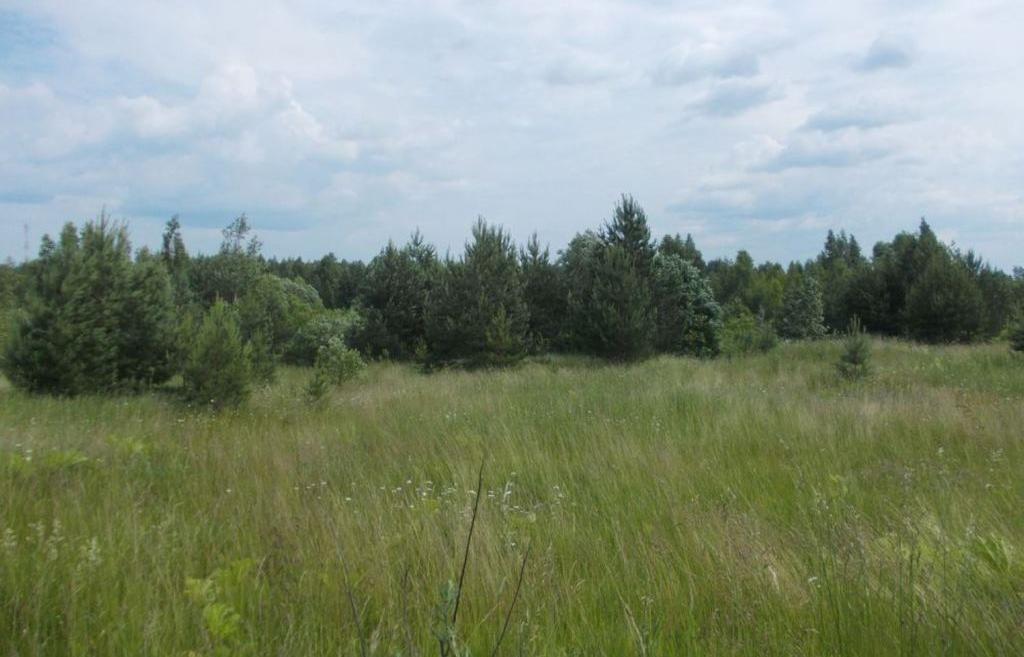 В Калязинском районе собственник не устранил нарушения на 238 гектарах сельскохозяйственных угодий - новости Афанасий