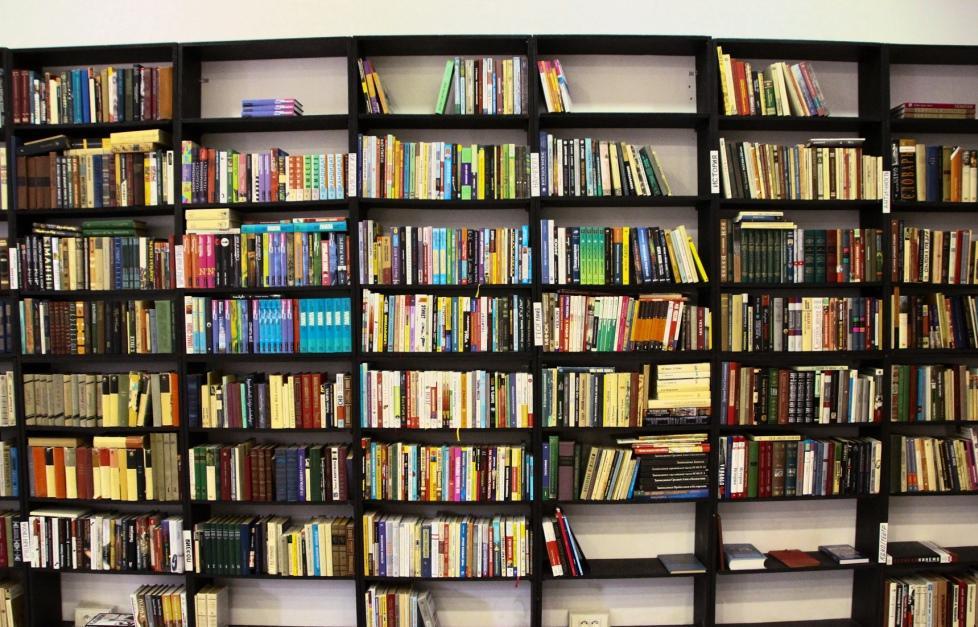 «Что делать?»: жителям Твери предлагают читать хорошие книги - новости Афанасий