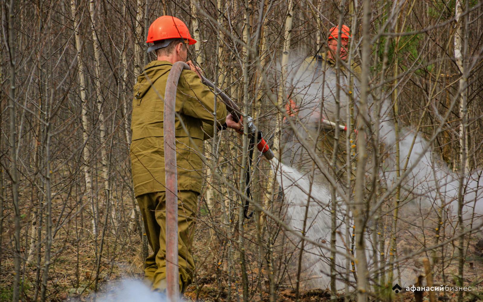 В Тверской области сохраняется высокая пожарная опасность