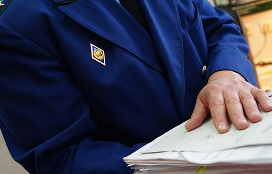 Прокуратура проконтролирует дело о ранении ребенка в Тверской области  - новости Афанасий