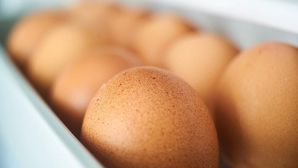 Минсельхоз спрогнозировал стабилизацию цен на мясо птиц и яйца в России - новости Афанасий