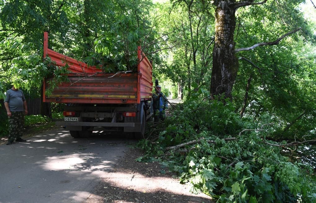 В парке «Воксал» установят видеонаблюдение - новости Афанасий