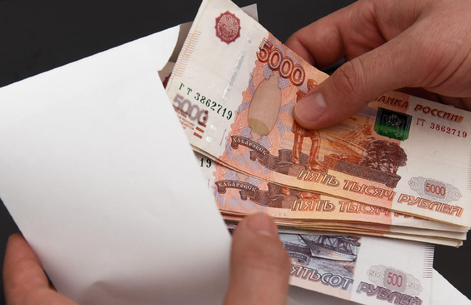 На жительницу Тверской области завели дело за попытку подкупить следователя - новости Афанасий