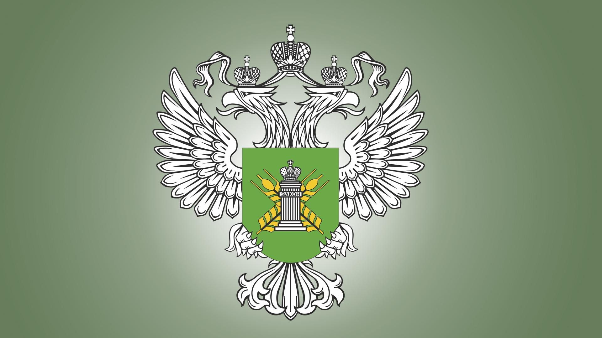 С начала года в Тверской области выявили 8 свалок на сельхозугодьях