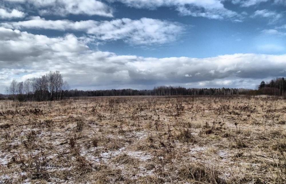 В Тверской области нашли 11 заросших земельных участков - новости Афанасий