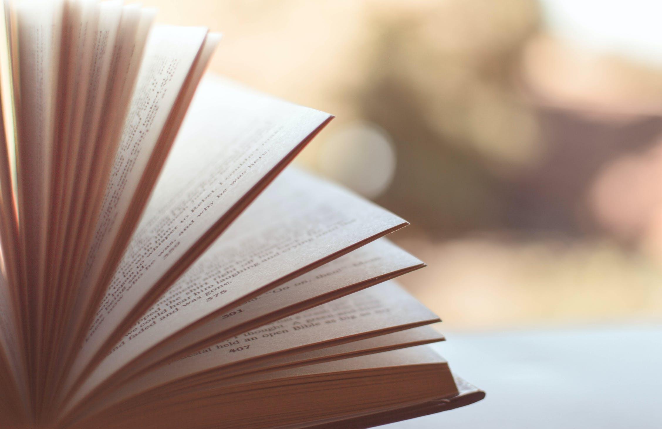 Свободную библиотеку с тысячей книг создали в России