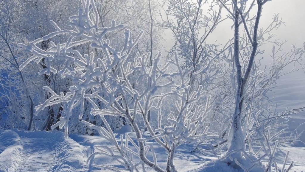 Центральная Россия «посинеет» от холода