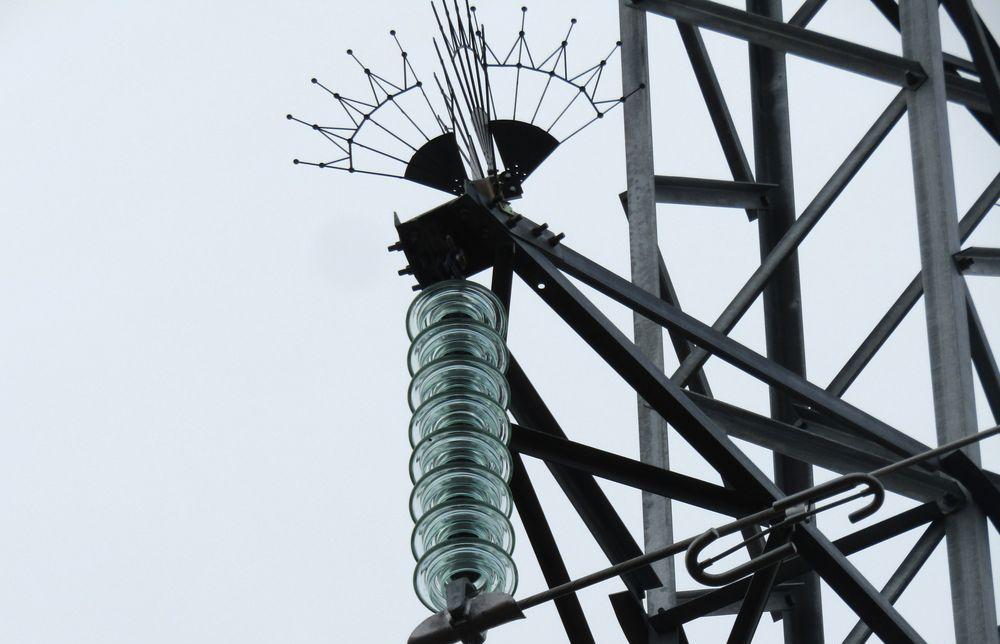 Энергетики «Россети Центр Тверьэнерго» устанавливают птицезащитные устройства на линиях электропередачи - новости Афанасий