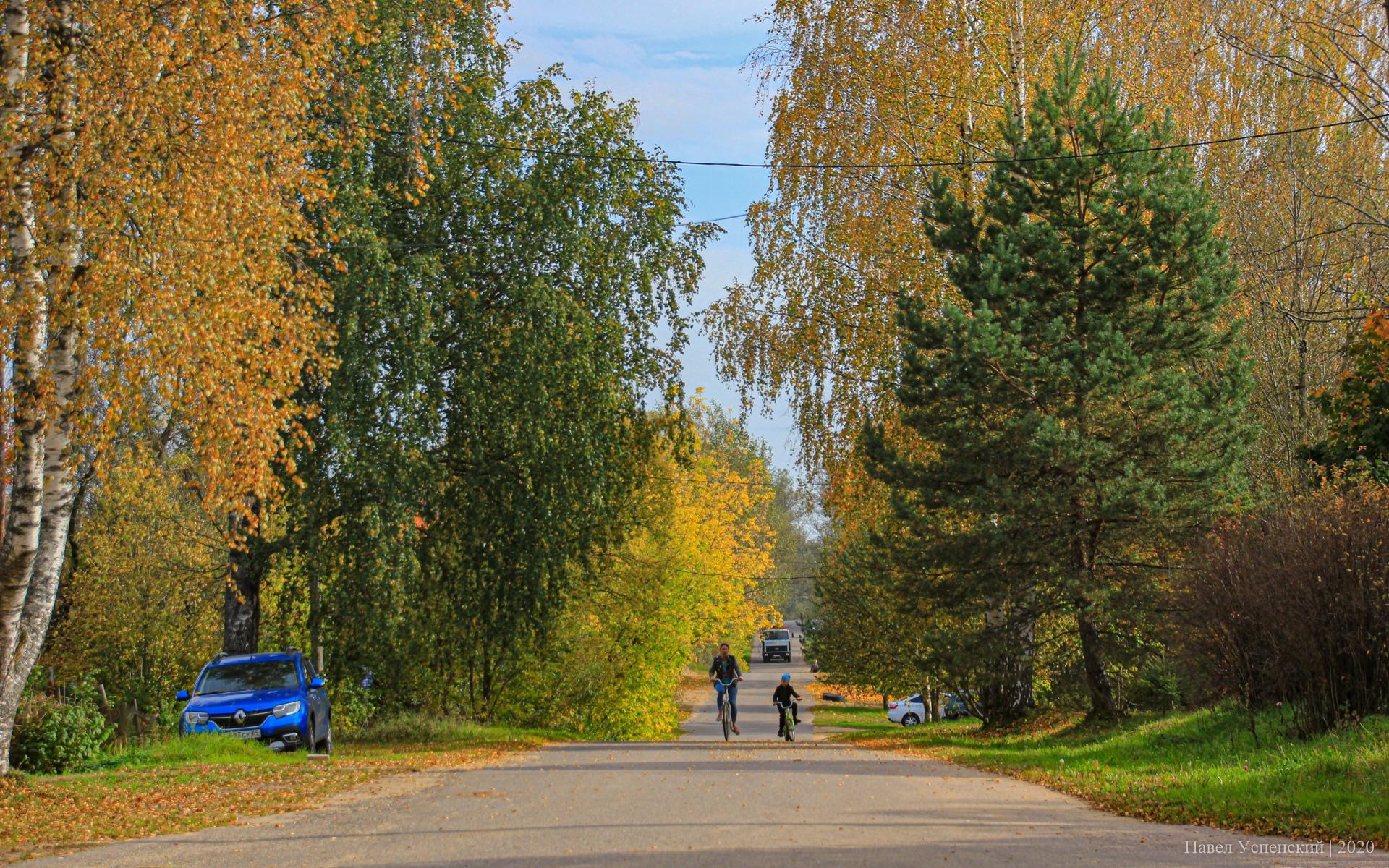 Похолодание и дожди: «бабье лето» уходит из Тверской области