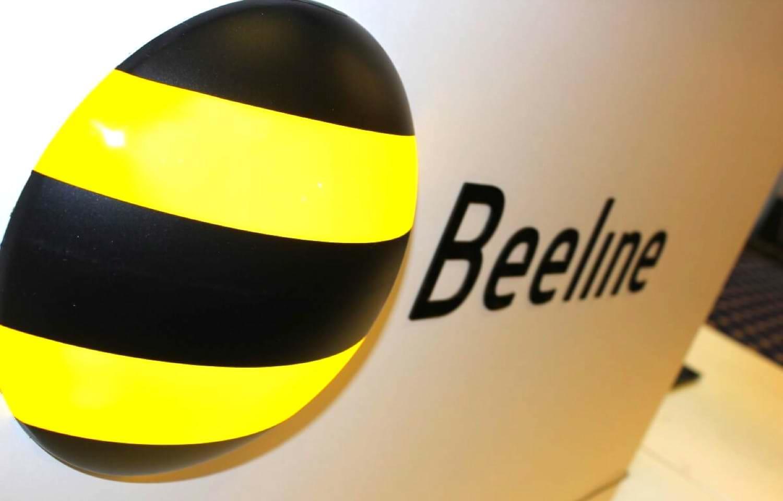 BeeInclusion: включенность, разнообразие, жизнь.  Билайн запустил единую экосистему инклюзивных проектов