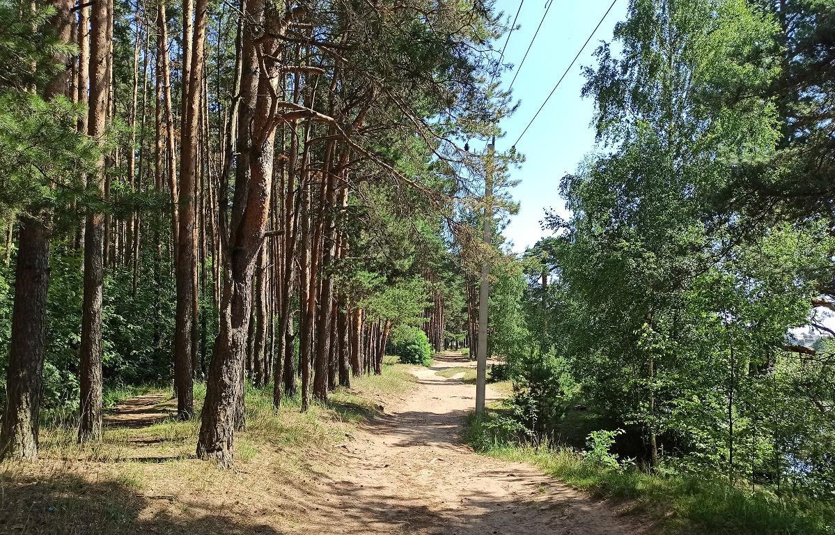 В Твери хотят создать еще один ландшафтный парк - новости Афанасий