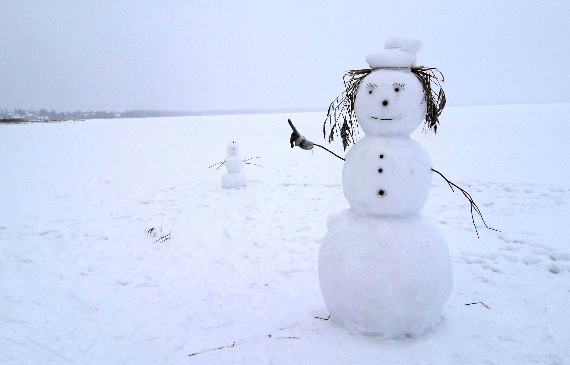 В Твери объявлен конкурс снеговиков - новости Афанасий