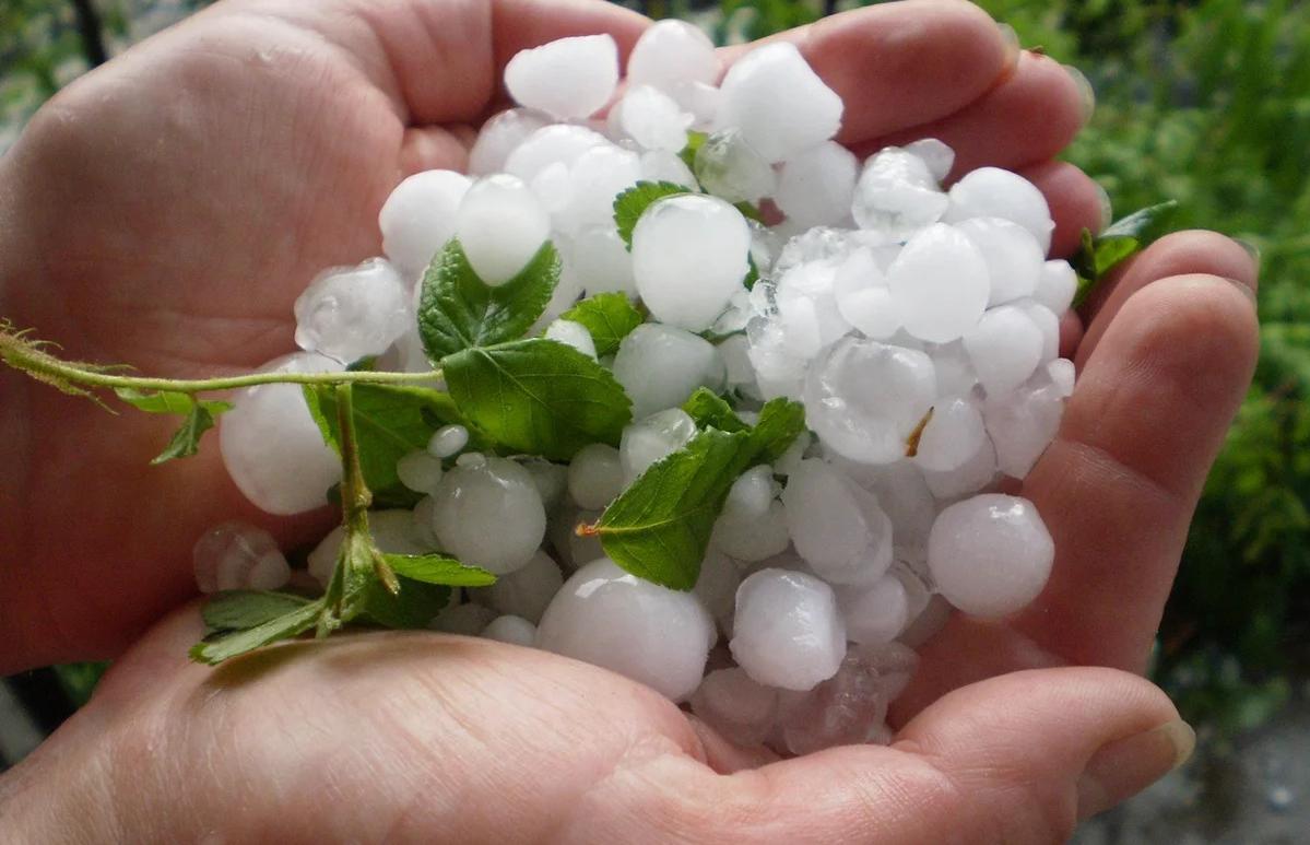 В Тверской области 13 июня испортится погода