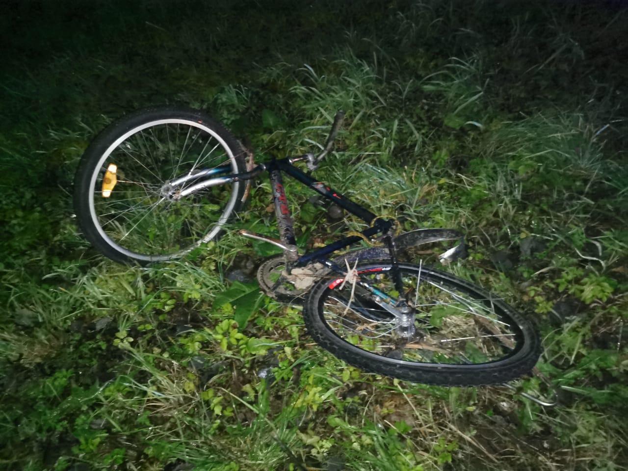 На федеральной трассе в Тверской области сбили велосипедиста - новости Афанасий
