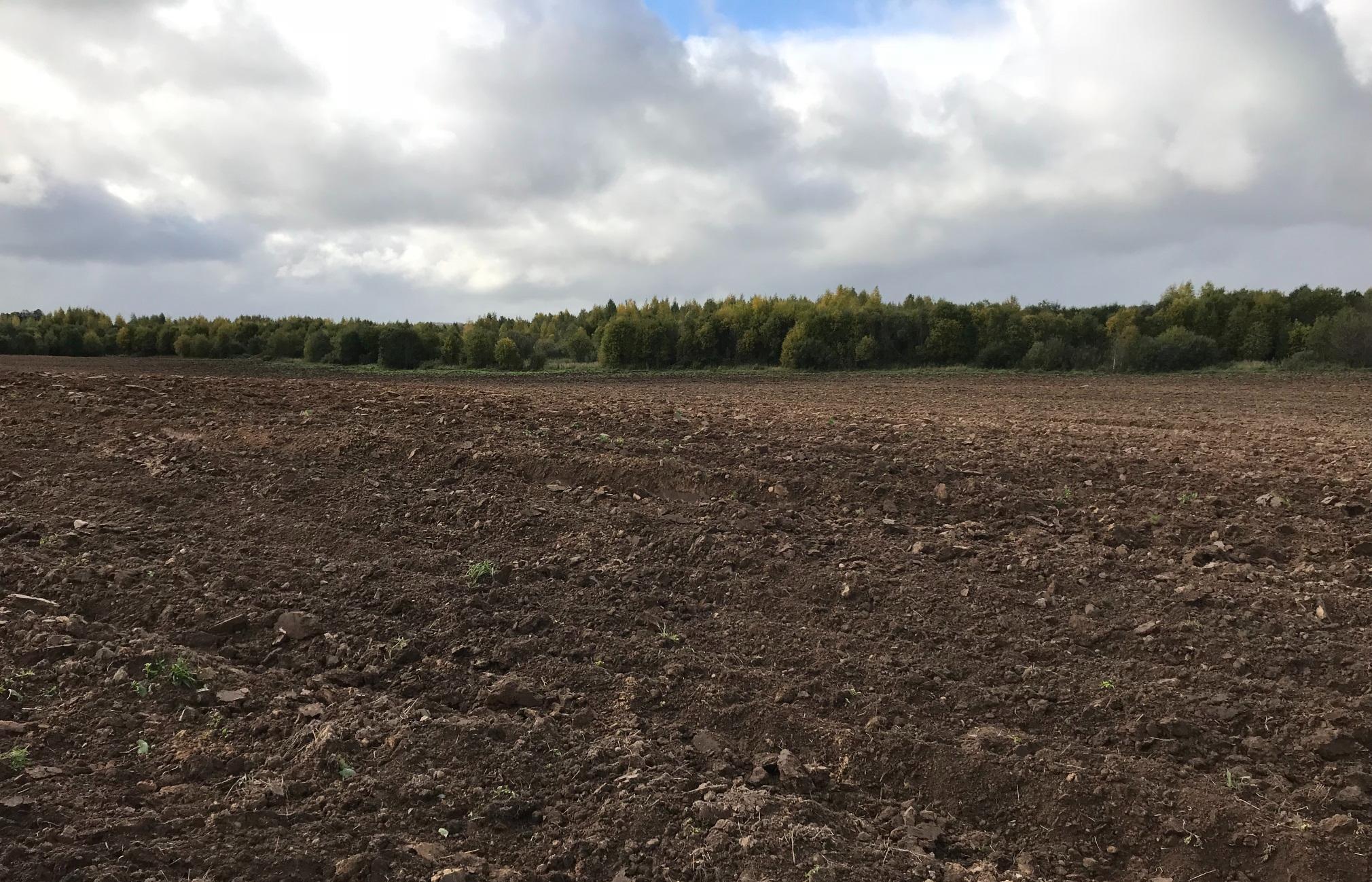 Под Тверью возвращены в оборот порядка 10 гектаров сельскохозугодий