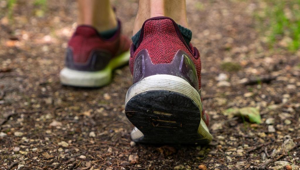 Любителей бега по пересеченной местности приглашают на забег в Тверской области - новости Афанасий