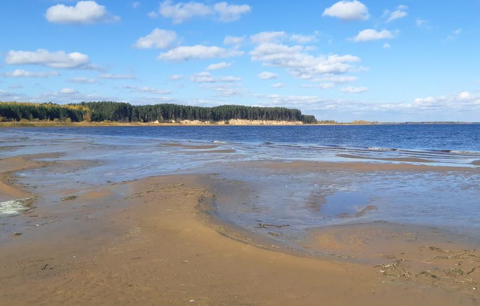 В реке Молога в Тверской области утонул мужчина  - новости Афанасий