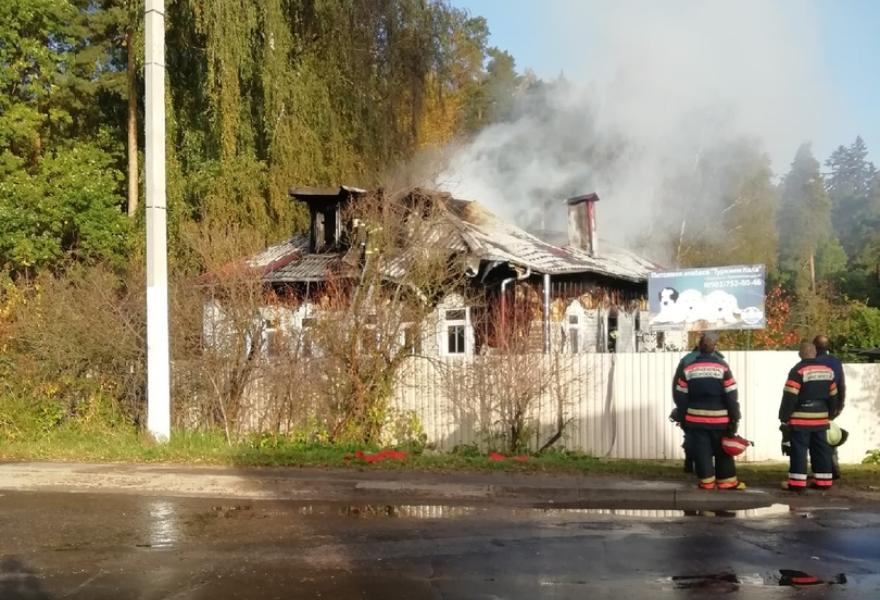 В Тверской области сгорел питомник для собак - новости Афанасий