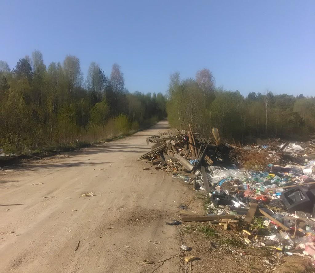 В Фировском районе Тверской области на дороге устроили свалку