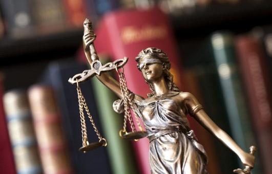 Четырнадцатый арбитражный апелляционный суд оставил в силе предписание об устранении нарушений обязательных требований земельного законодательства - новости Афанасий