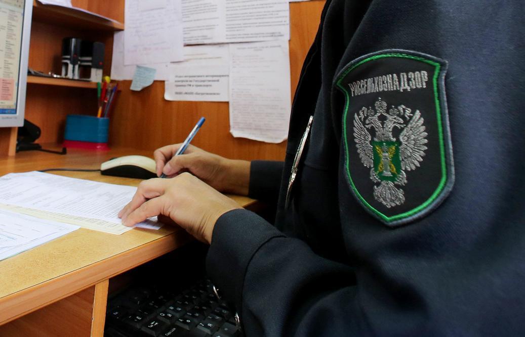 Как оформлять и гасить карантинный сертификат, рассказали специалисты - новости Афанасий