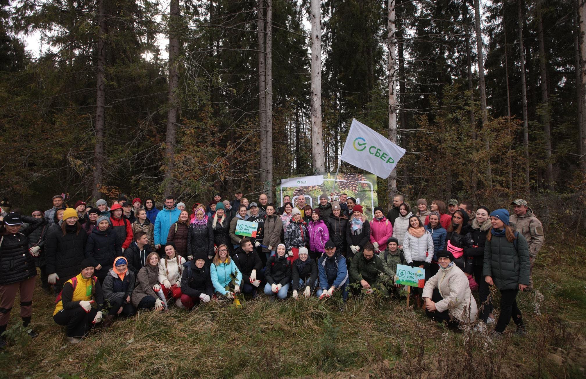 Более 20 тысяч молодых саженцев высадил Сбер в рамках Всероссийской экологической акции «Сохраним лес» - новости Афанасий
