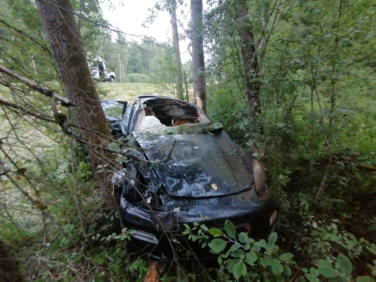 Водитель Porsche доставлен в больницу после столкновения с лосем на М9 в Тверской области - новости Афанасий
