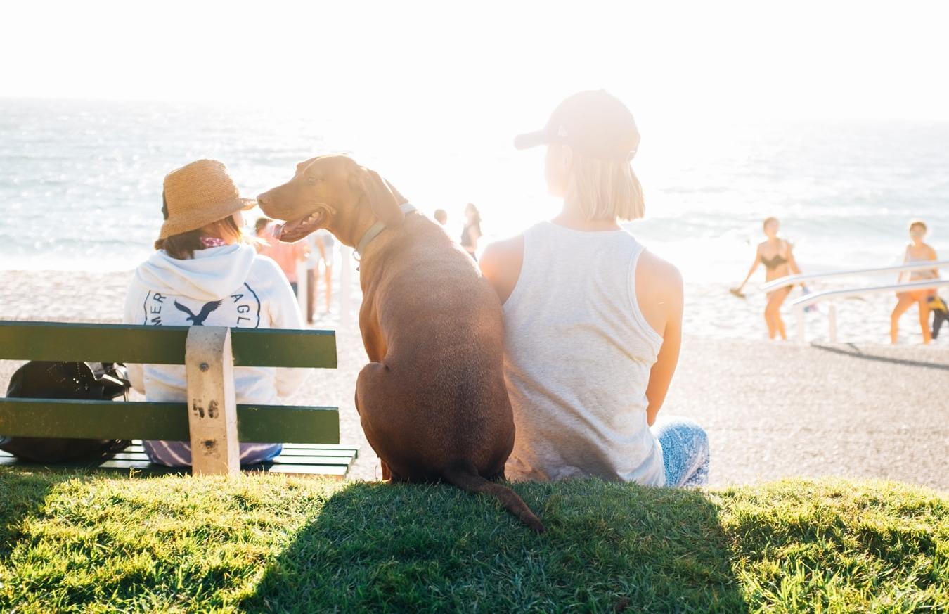 Синоптики пообещали жаркое лето