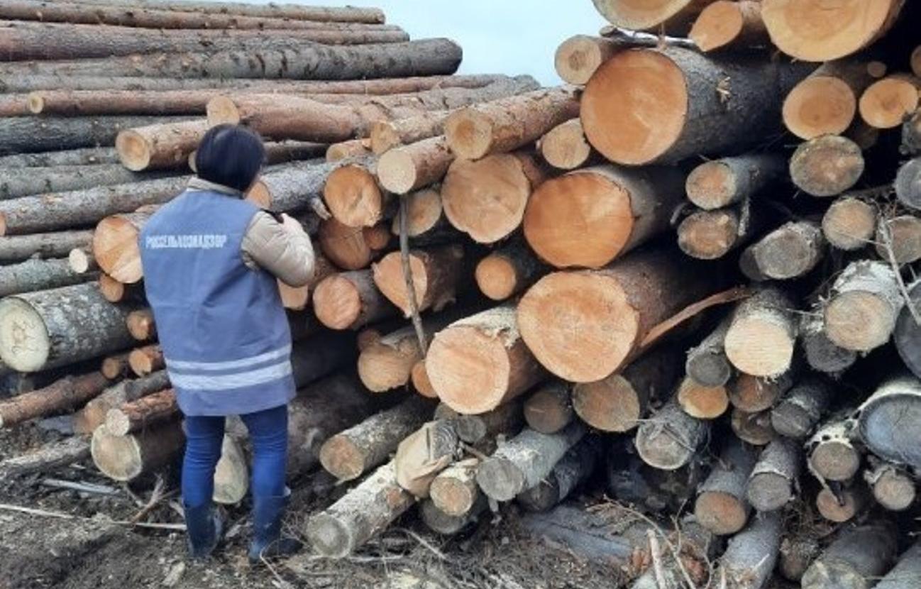 Весь лесоматериал из карантинных зон проходит досмотр