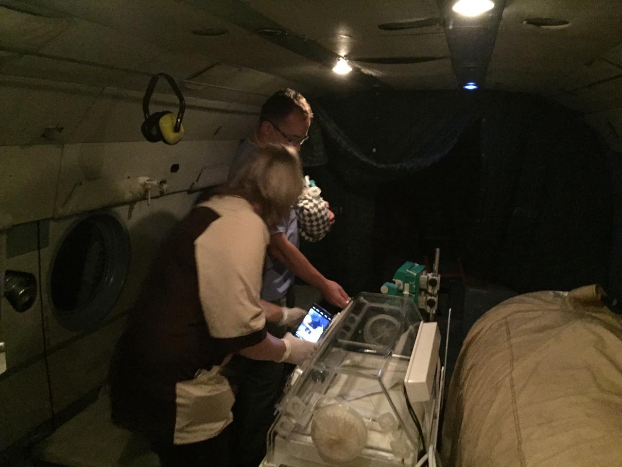 В Тверь из Лесного вертолетом МЧС доставили ребенка с пороком сердца - новости Афанасий