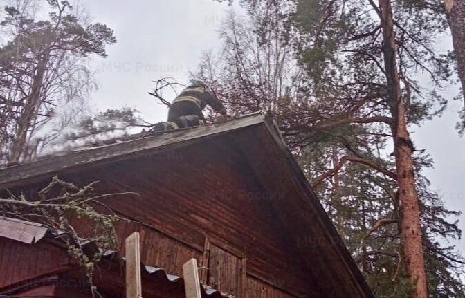 В Тверской области пожарные помогали жителям поселка, где сильный ветер повалил деревья - новости Афанасий