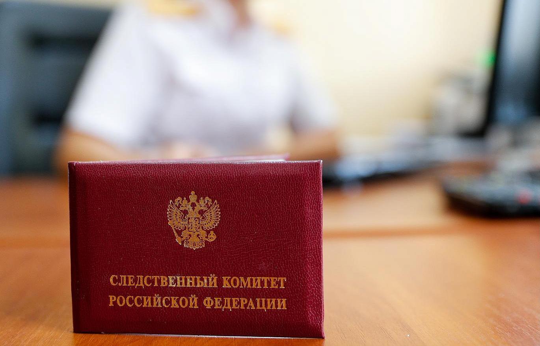 В Тверской области чиновников ждет проверка после нападения собаки на женщину с ребенком - новости Афанасий