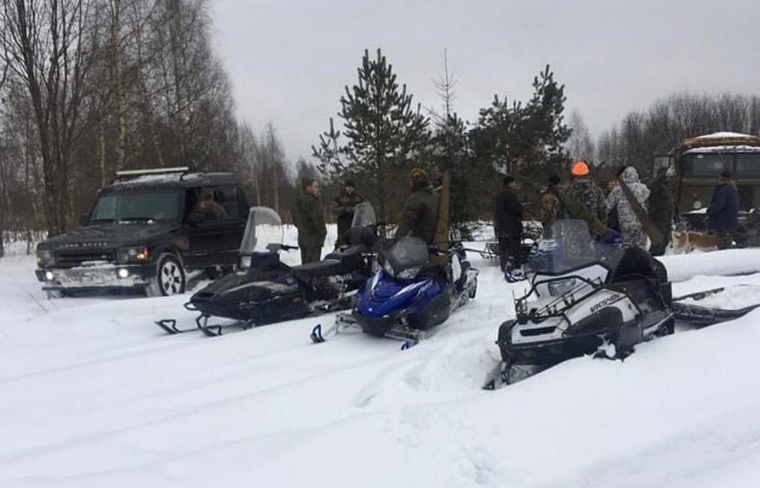 Убийство лосихи в Тверской области: полиция начала проверку, зоозащитники рассказали подробности - новости Афанасий
