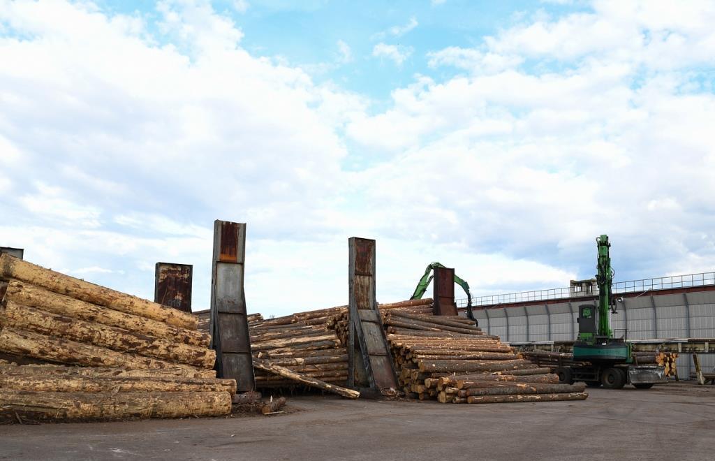 Тверской лес и мех выходят на новые рынки - новости Афанасий