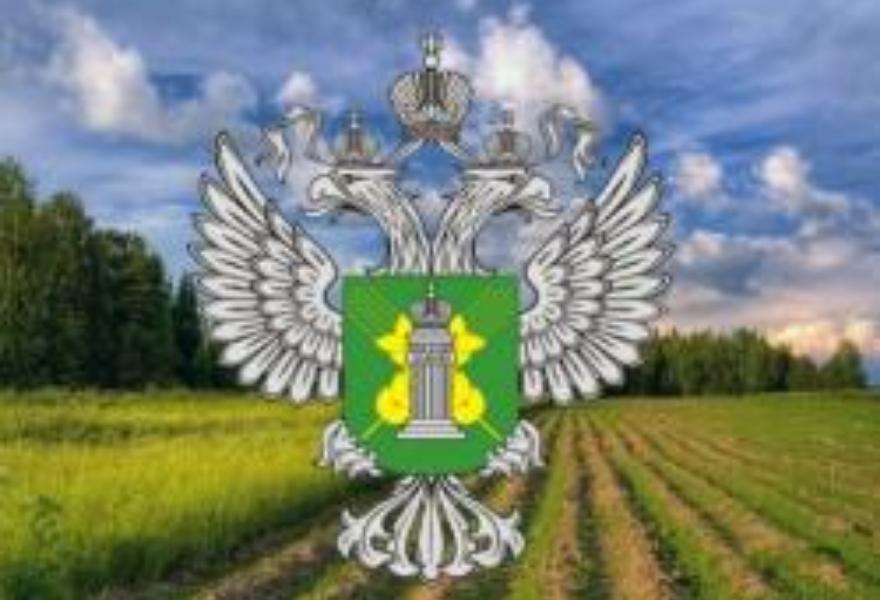 В соседнем с Тверской областью регионе вводятся в оборот земли сельхозназначения, от которых добровольно отказались собственники