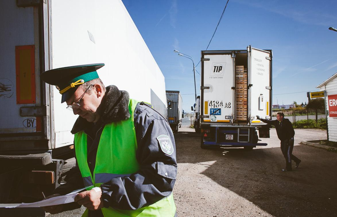 Россельхознадзор продолжает досмотр импортных и экспортных грузов с продукцией растительного происхождения - новости Афанасий