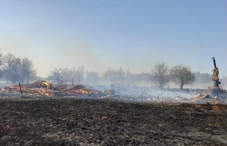 В Тверской области горевшая сухая трава едва не уничтожила деревню - новости Афанасий