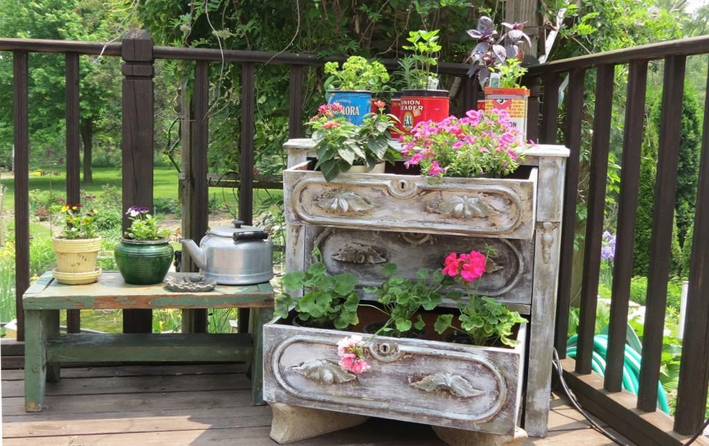 Тверской Ботанический сад ищет старую мебель и посуду для выставки «Бабушкины окна»
