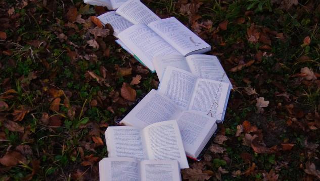 На «Тверском переплете» представят новые издания