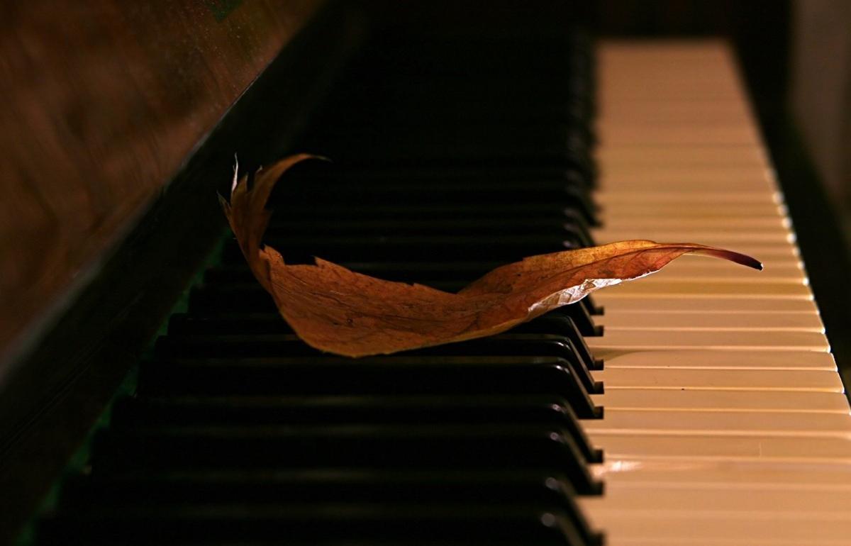 На «Музыкальной осени в Твери» будут звучать классика, джаз и симфо-рок - новости Афанасий