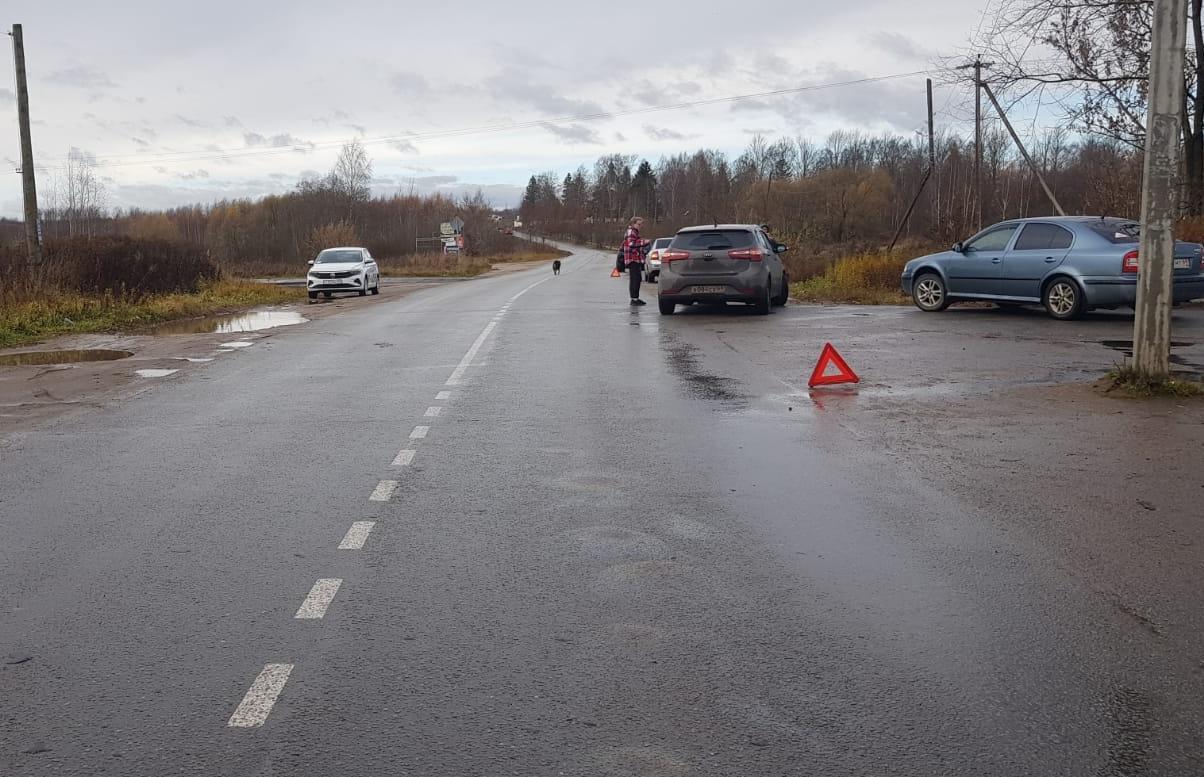 Не пристегнутая ремнем безопасности женщина получила травмы в спровоцированном  ДТП в Тверской области - новости Афанасий