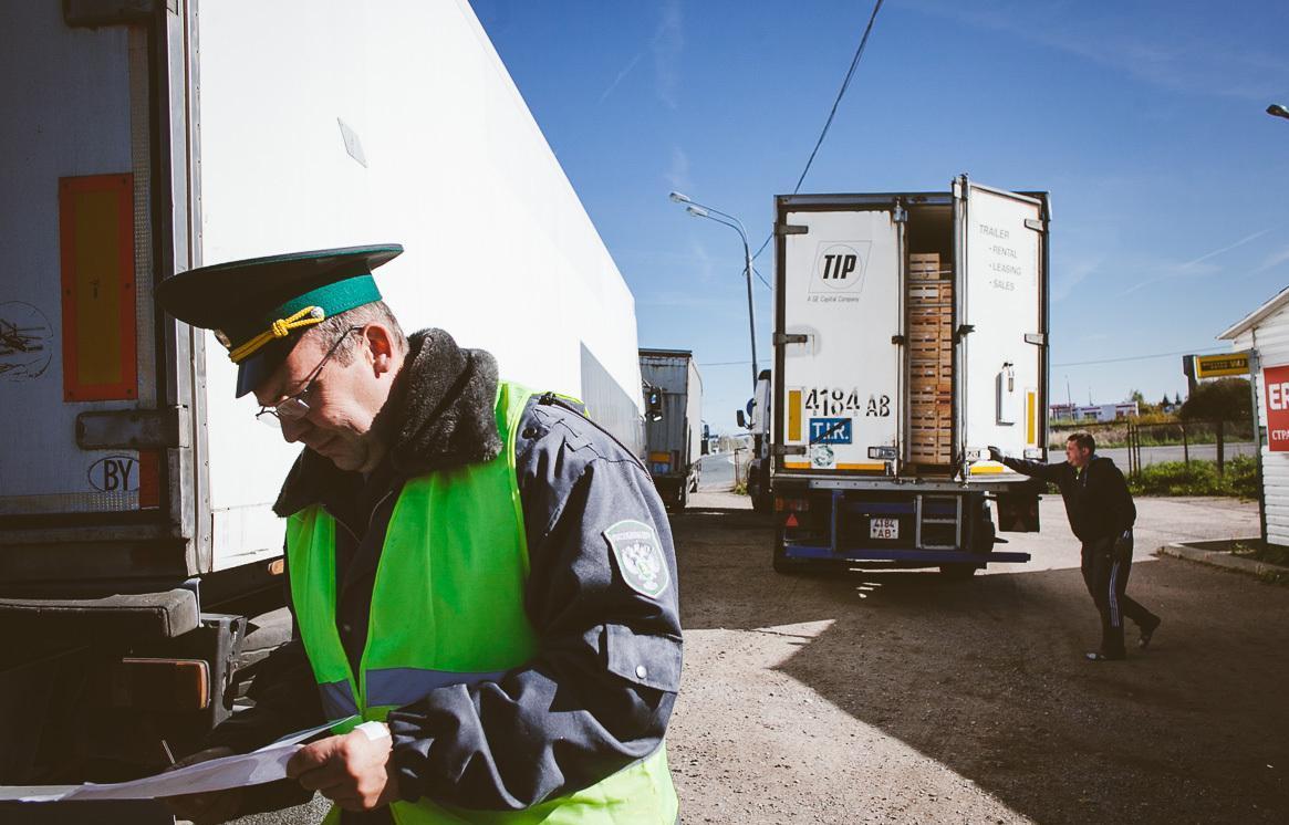 Россельхознадзор в Тверской области проверил свыше 10 тыс партий импортных грузов - новости Афанасий
