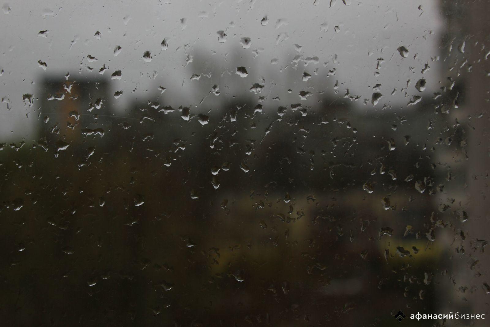 «Нерабочая» неделя в Тверской области будет дождливой