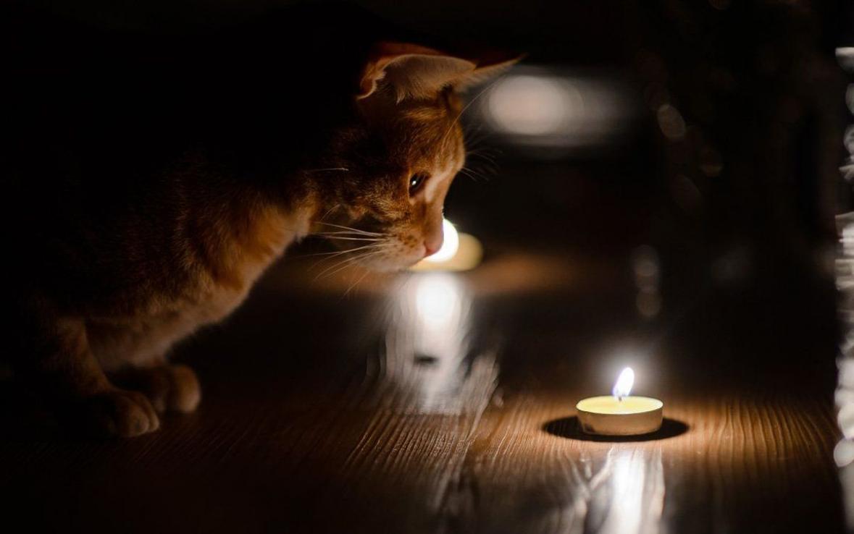 Стало известно, какие дома в Твери останутся без света на следующей неделе