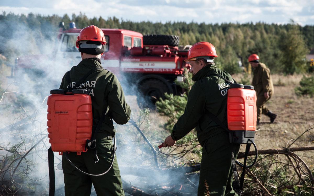 «Желтый» уровень опасности продлен в Тверской области из-за риска пожаров