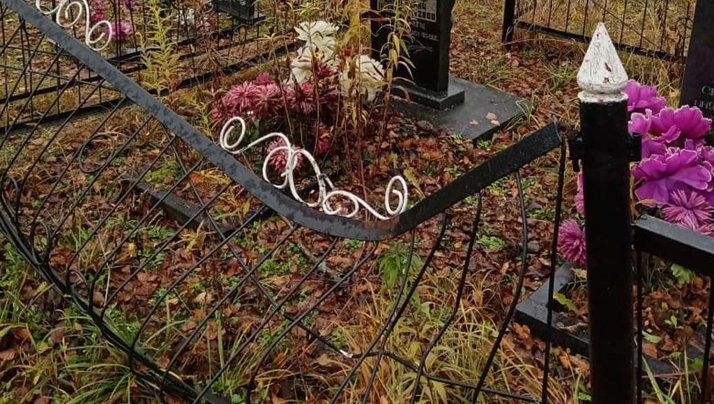 Полиция не стала возбуждать дело из-за поврежденных оград на кладбище в Тверской области - новости Афанасий
