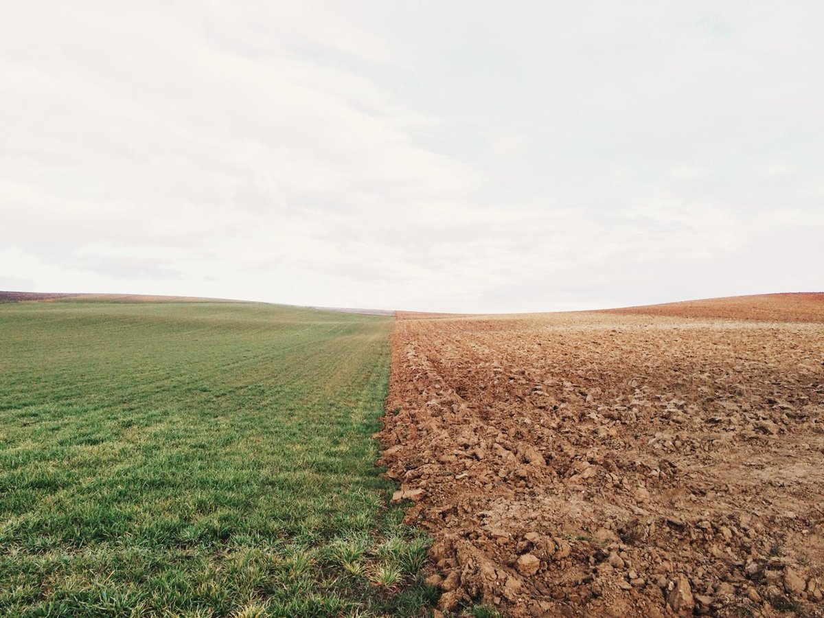 Почти сотню предостережений о недопустимости нарушения обязательных требований земельного законодательства выдали в Тверской области